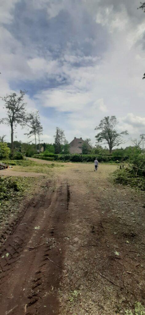 Na de orkaan eeen weg zonder bomen